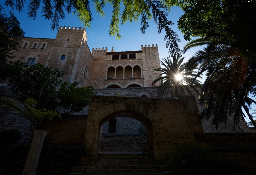 Building in Palma de Mallorca with the sun shining through a palm