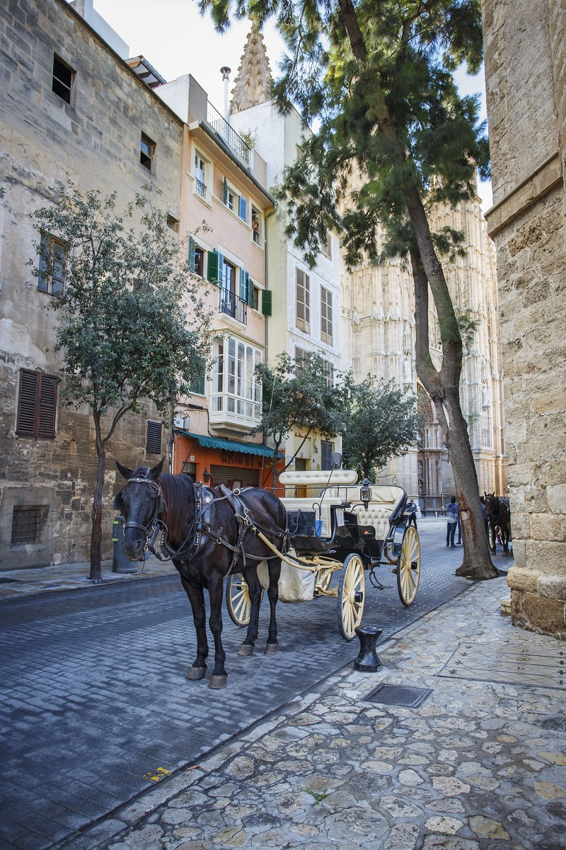 The picture shows a horse-drawn carriage in an alley of Palma